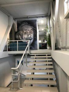 портрет Эйнштейна г.Новосибирск, аэрография