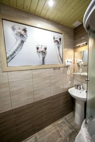 идеи дизайна ванна птицы